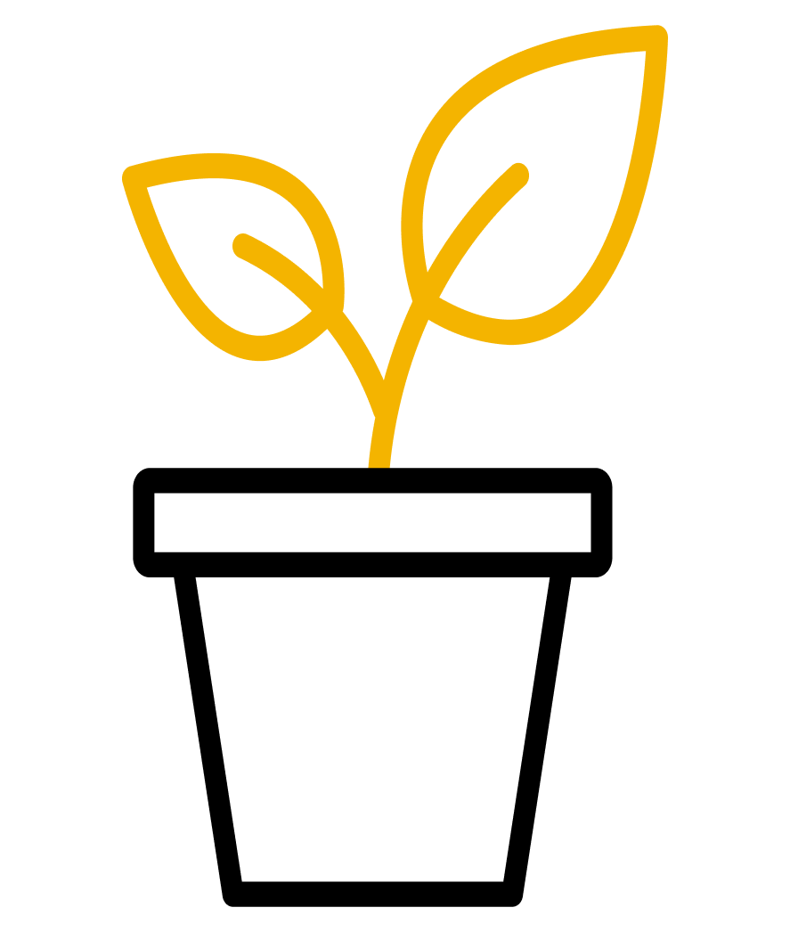 Plant Dimensions
